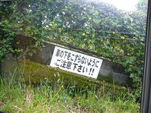 敬老の日に青島までドライブに行って敬老の日なのに何故か敬老の人がシゴツしてるガソリンスタンドがあった。んで敬老会だったのか織りを持った敬老の人が道端をウロウロしていた。そんな台風直前の今日この頃