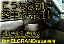 こうなる前に、愛車を守れ!エルグランド(E52)【PinPointGuard(ピンポイントガード/車種別カット済 セキュリティフィルム)】