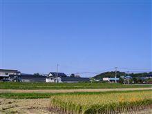 快晴!米刈りをした