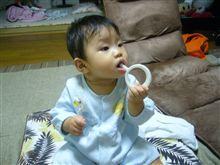 今日の アじんじん。歯磨きしてます。