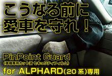 こうなる前に、愛車を守れ!アルファード(20系)【PinPointGuard(ピンポイントガード/車種別カット済 セキュリティフィルム)】