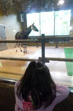 遠いけど。。。動物園へGO!