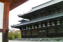 東寺(20111103)