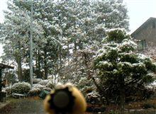 雪景色~。。。。