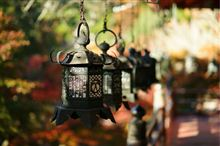 奈良の紅葉名所 談山神社と長谷寺 撮影記