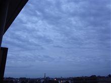 11月29日 今朝も曇り空な週の2日目火曜日、おはです~♪