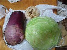 アニキ農園の野菜をいただきました。