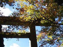 秋の宮崎満喫ツアー2011~その9