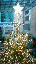 イッテQクリスマスツリー