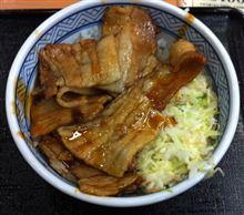 吉野家豚丼で夜明けのドライブ