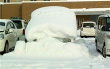 今年も大雪
