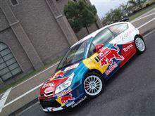 Red Bullレプリカの作り方