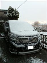初積雪(^o^)