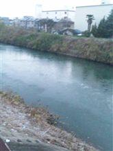 川が凍ってた~