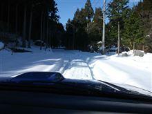 今日も不完全燃焼の雪遊び・・・いつまで続くんだろ。