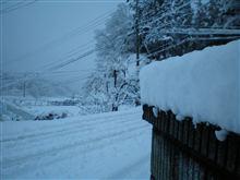 冬やぁ~~~