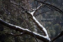 snow scene…