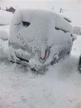 雪は嫌い!