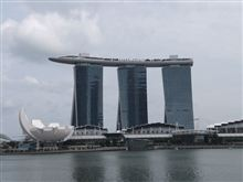 出張で、シンガポールに行ってきました。