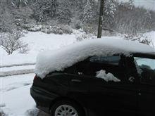 えっ うそ また雪・・;