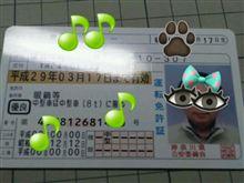 来た~っ  \(^O^)/