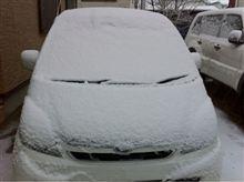 雪デット(~_~;)