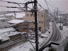 そこは雪国だった・・・