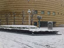 雪☆ゆき☆ユキ☆