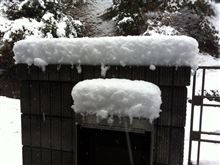 4年振りの2月29日は「ドカ雪祭り」