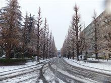 雪の慶應義塾・日吉キャンパス