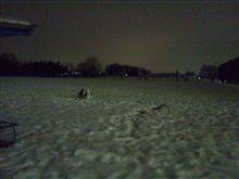 なにがなんでも雪遊び♪