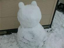 昨日は雪でしたが。