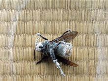 スズメバチが...