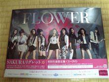 FLOWER~~SAKURAリグレット~~(・∀・)ノ