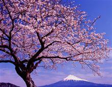 春は○○○○の季節