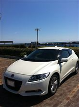 週末ドライブ:館山・白浜