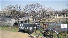 武蔵国分寺を散策してきました。