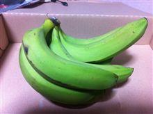 今日のバナナとソーラー充電