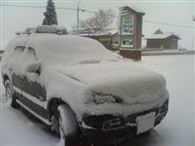 春スキー!?