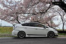 【DBC】 ✿桜✿ 今年初撮り~♪ (o^∇^o)ノ 2012.04