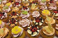 オランダで「昆虫料理本」出版
