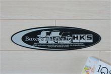 Boxer's Balance by HKS