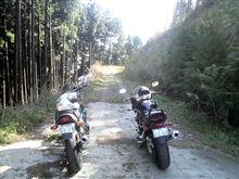 『バンディット』 初林道