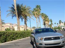 街角の名車たち12 FORD Mustang / Phoenix AZ