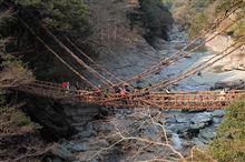 祖谷渓 かずら橋