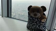 地上から450mの分身クマが世界で最初の大きなクマさん認定か?