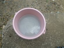 1年間青空放置してたシビックを洗車したら水が白く濁った