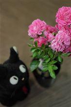 小さなバラの花