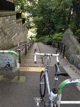 坂巡り3 胸突坂(階段付き)