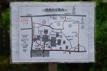 雨のドライブ 伊那路 あじさいの深妙寺へ 画像24枚